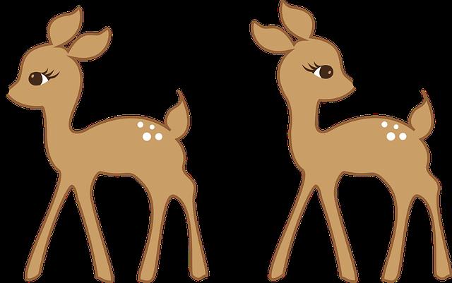 deer-1157862_640